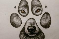 Эскиз лапа волка