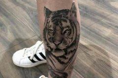 tiger-tattoo-105