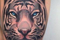tiger-tattoo-111