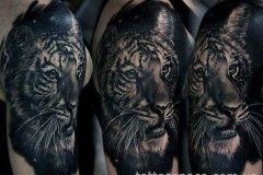 tiger-tattoo-124