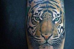 tiger-tattoo-145