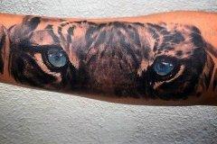 tiger-tattoo-150