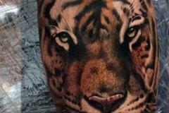 tiger-tattoo-151