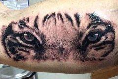 tiger-tattoo-22