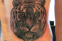 tiger-tattoo-53