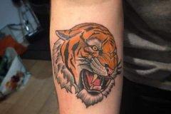 tiger-tattoo-62
