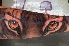 tiger-tattoo-74