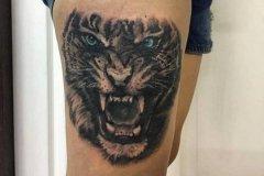tiger-tattoo-76