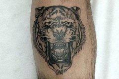 tiger-tattoo-79