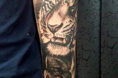 tiger-tattoo-86