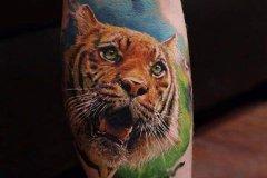 tiger-tattoo-9
