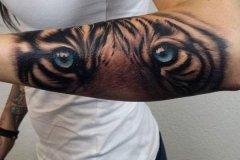 tiger-tattoo-99