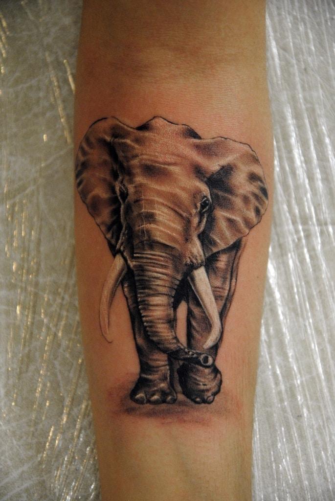 Значение татуировки слона